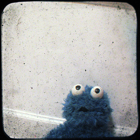 http://purplejesus.files.wordpress.com/2010/11/cookiemonster.jpg