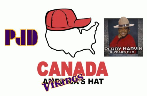http://purplejesus.files.wordpress.com/2011/01/canadavikingshat.jpg?w=500