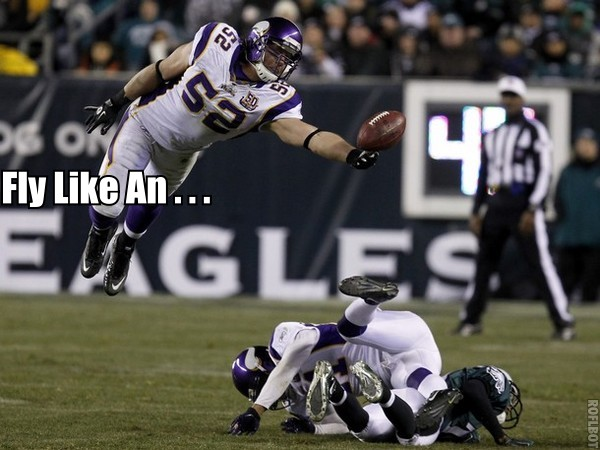 http://purplejesus.files.wordpress.com/2011/02/chadgreenway011.jpg