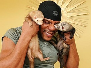 http://purplejesus.files.wordpress.com/2011/04/shiancoe-and-ferrets.jpg