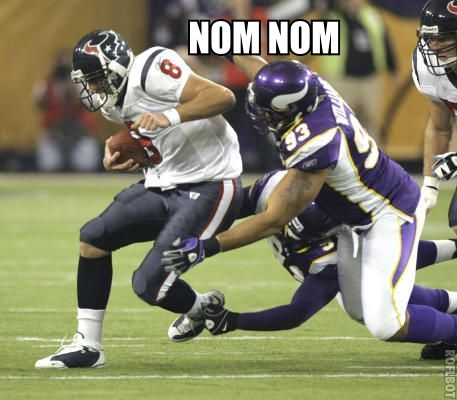 http://purplejesus.files.wordpress.com/2011/08/vikings-texans-end.jpg
