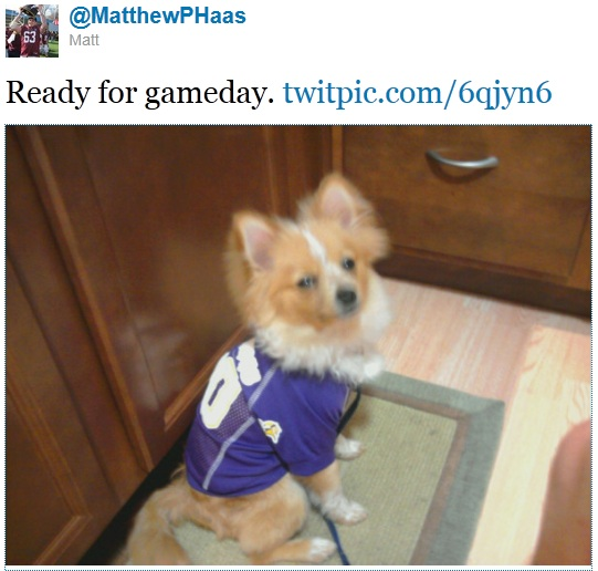 http://purplejesus.files.wordpress.com/2011/09/vikings-dog-2011.jpg
