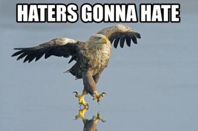 http://purplejesus.files.wordpress.com/2011/10/haters_gonna_hate_eagle.jpg?w=400