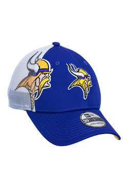 http://purplejesus.files.wordpress.com/2012/06/2012-fathers-day-vikings-hat.jpg