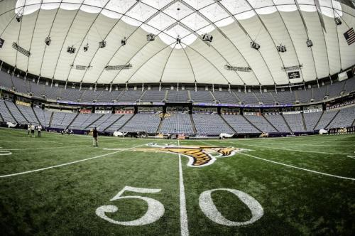 http://purplejesus.files.wordpress.com/2012/08/vikings-metrodome-field-2012-chargers.jpg?w=500